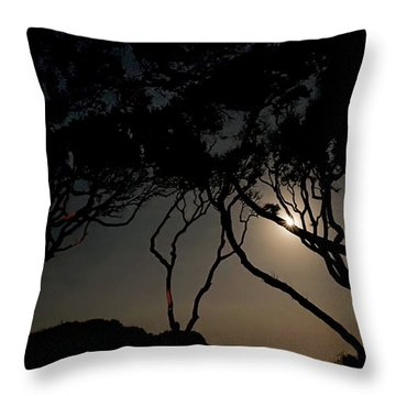 Throw Pillow featuring the photograph Jekyll Island Allure by Laura Ragland