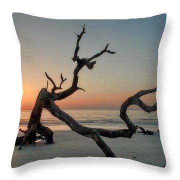 Jekyll Island Driftwood Throw Pillow