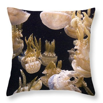 Jelly Parade Throw Pillow by Jim And Emily Bush