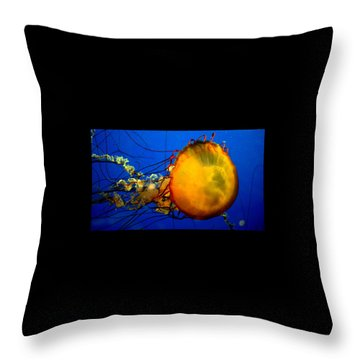 Jellyfish Throw Pillow by David Gilbert