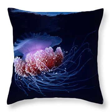 Jellyfish Throw Pillow by Steve Rosenberg - Printscapes