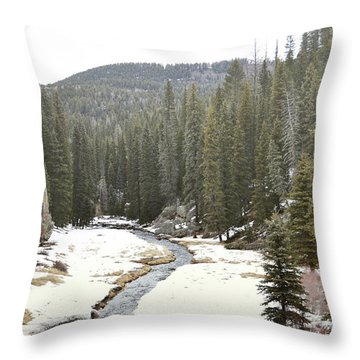 Throw Pillow featuring the photograph Jemez Mountains Forest Stream by Andrea Hazel Ihlefeld