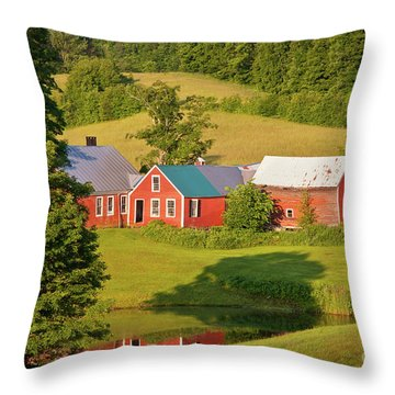Jenne Farm Reflection Throw Pillow by Susan Cole Kelly