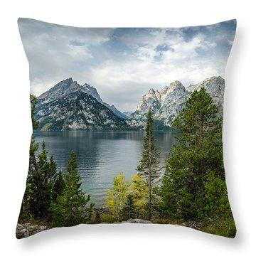 Jenny Lake Overlook Throw Pillow