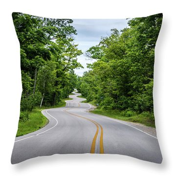 Jens Jensen's Winding Road Throw Pillow
