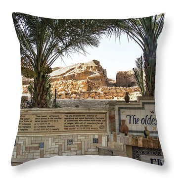 Throw Pillow featuring the photograph Jerico by Mae Wertz