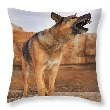 Jerry Lee  Throw Pillow