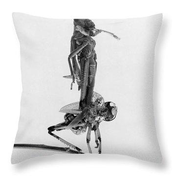Jerusalem: Locusts, 1915 Throw Pillow by Granger
