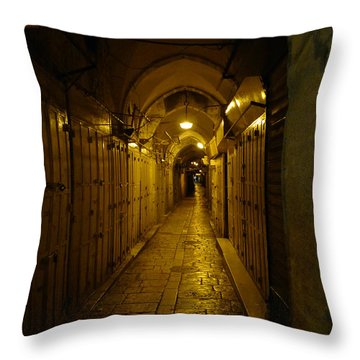 Throw Pillow featuring the photograph Jerusalem Of Copper 1 by Dubi Roman