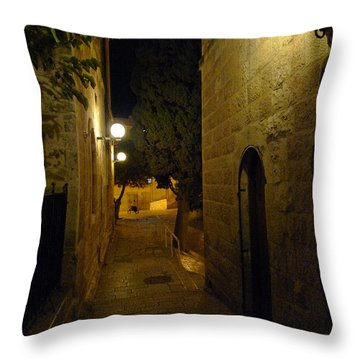 Throw Pillow featuring the photograph Jerusalem Of Copper 4 by Dubi Roman