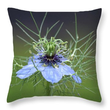 Jester's Hat Flower Throw Pillow