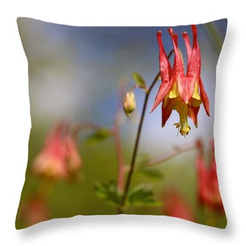Jester's Hat - Wild Columbine  Throw Pillow