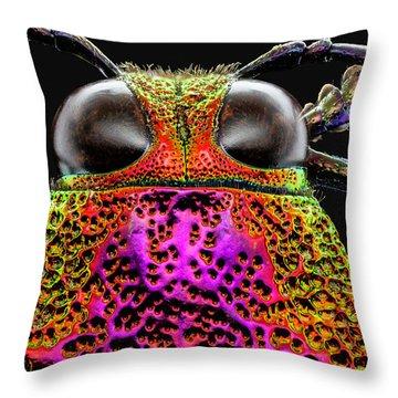 Jewel Beetle 3x Throw Pillow