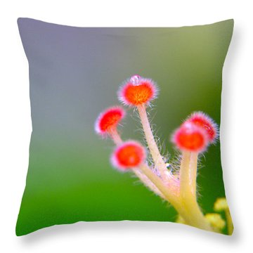 Jewel Of The Crown Throw Pillow
