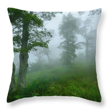 Throw Pillow featuring the photograph Jewell Hollow Overlook by Thomas R Fletcher
