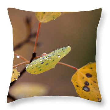 Jewels Of Autumn Throw Pillow by Jim Garrison