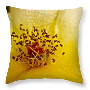 Jitterbug Throw Pillow by Gwyn Newcombe