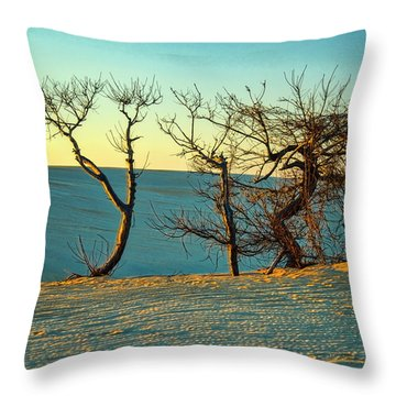 Jockey Ridge Sentinels Throw Pillow