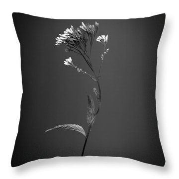 Joe Pye 1 Throw Pillow