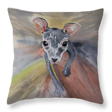 Joey In Mums Pouch Throw Pillow