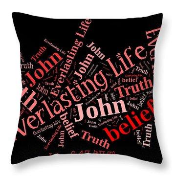 John 6 47 Throw Pillow
