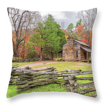 John Oliver Cabin Throw Pillow