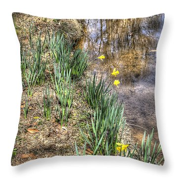 John Quills Throw Pillow