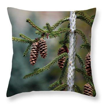 #johnmuir Throw Pillow by Becky Furgason