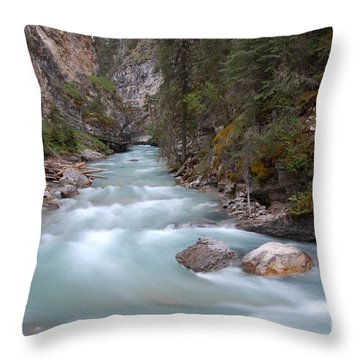 Johnston Canyon In Banff National Park Throw Pillow by RicardMN Photography