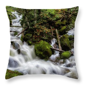 Joining Forces Throw Pillow