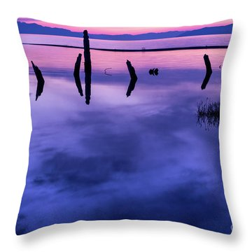 Jojkjk Throw Pillow by Gary Whitton
