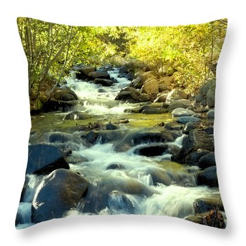 Jones Creek In Fall Throw Pillow