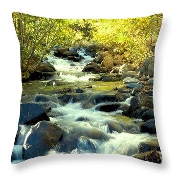 Jones Creek In Fall Throw Pillow