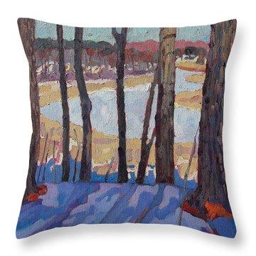 Jones Creek Morning Throw Pillow by Phil Chadwick