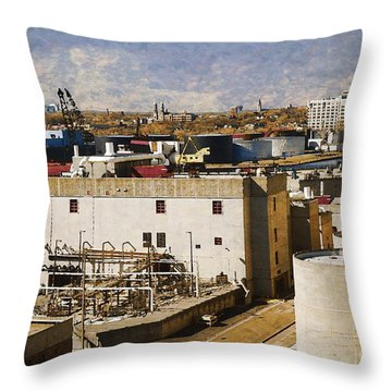 Jones Island Throw Pillow