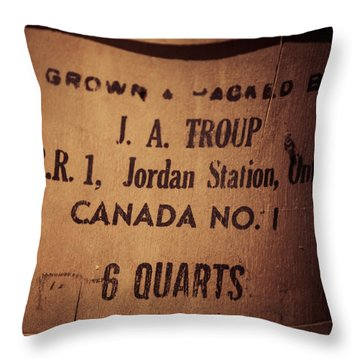 Throw Pillow featuring the photograph Jordan Station by Chris Bordeleau