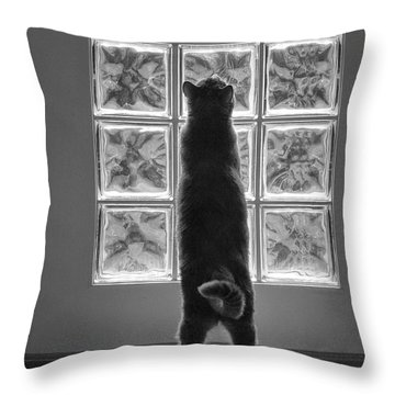 Joseph At The Window Throw Pillow