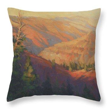 Joseph Canyon Throw Pillow