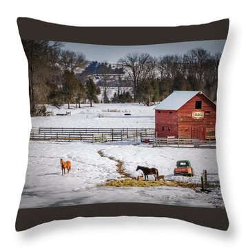 Throw Pillow featuring the photograph Joseph Oregon by Cat Connor