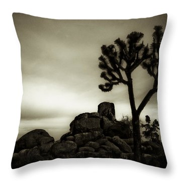 Throw Pillow featuring the photograph Joshua Morning by Tom Vaughan