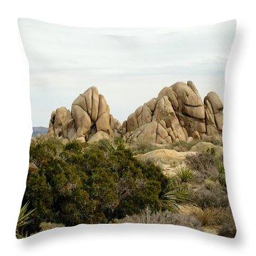 Joshua Park 4 Throw Pillow