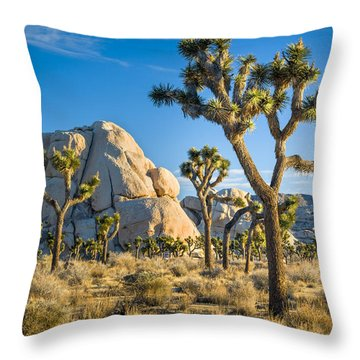 Joshua Tree And Intersection Rock Throw Pillow by Joe Doherty