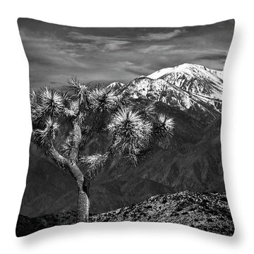 Throw Pillow featuring the photograph Joshua Tree At Keys View In Black And White by Randall Nyhof