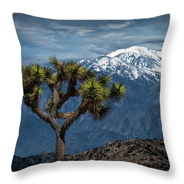 Throw Pillow featuring the photograph Joshua Tree At Keys View In Joshua Park National Park by Randall Nyhof