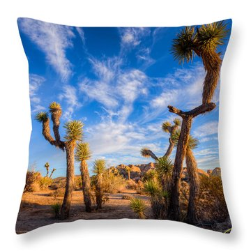 Joshua Tree Dawn Throw Pillow