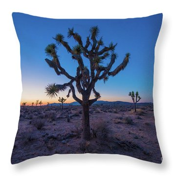 Joshua Tree Glow Throw Pillow