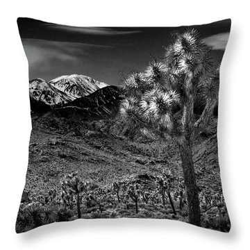Throw Pillow featuring the photograph Joshua Tree In Black And White In Joshua Park National Park With The Little San Bernardino Mountains by Randall Nyhof