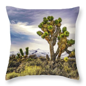 Joshua Tree On The Extraterrestrial Highway Throw Pillow