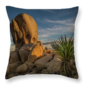 Throw Pillow featuring the photograph Joshua Tree Rock Formation by Ed Clark