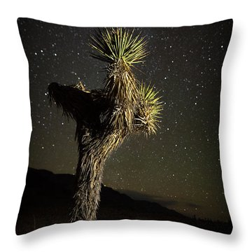 Joshua Tree Starred Throw Pillow